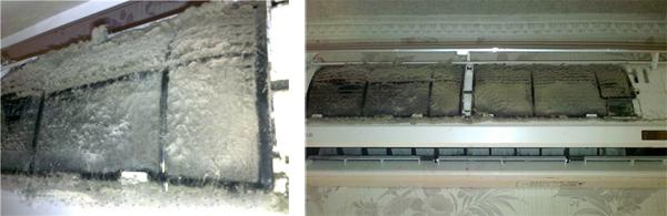 Загрязнений-внутренний блок плесенью, грибами, пылью, аллергенами, клещами и шерстью